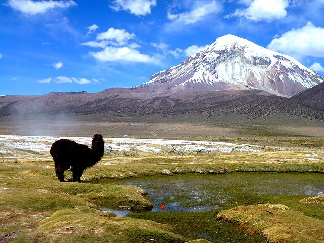 "Que voir en Bolivie ? Parc National Sajama © <a href=""https://www.flickr.com/photos/guellec31"" target=""_blank"">Léo Guellec</a>"