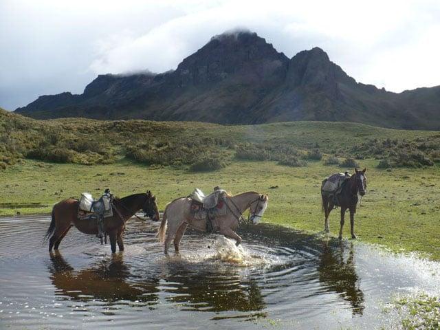 balade equestre dans les andes