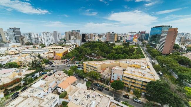 Bonne nouvelle Pérou : arbres à Lima