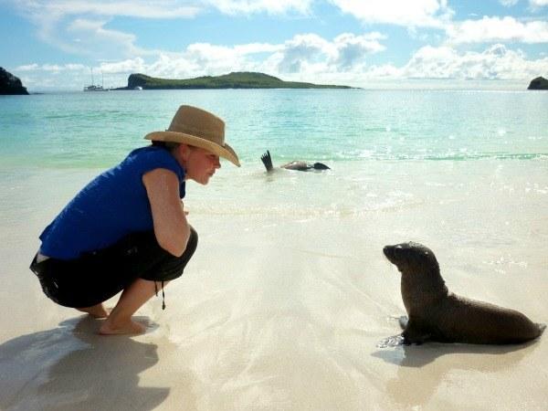 À la rencontre des loups de mer aux Galapagos