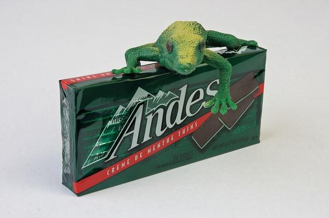 grenouille des andes
