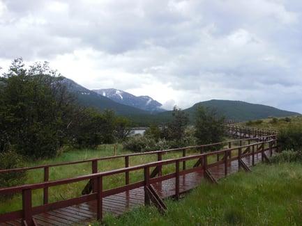 Parque Nacional de la Tierra del Fuego, voyage en Patagonie